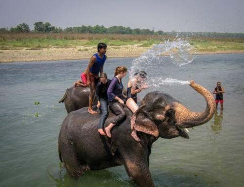 Kathmandu and Chitwan